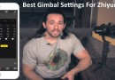 Best Gimbal Settings For Zhiyun Crane 1 2 and V2